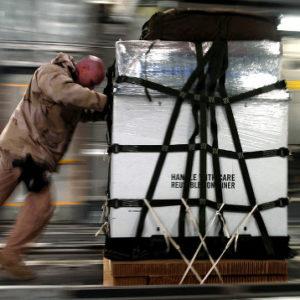 Schodołaz transportowy – sprzęt do zadań specjalnych
